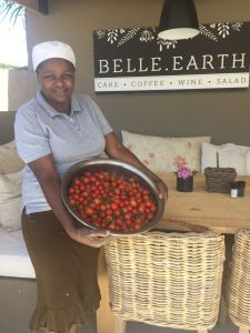 Our daily harvest of fresh cherry tomatoes from our vegetable garden