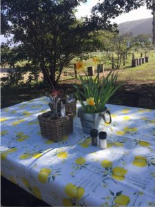 table-with-vase-flowers